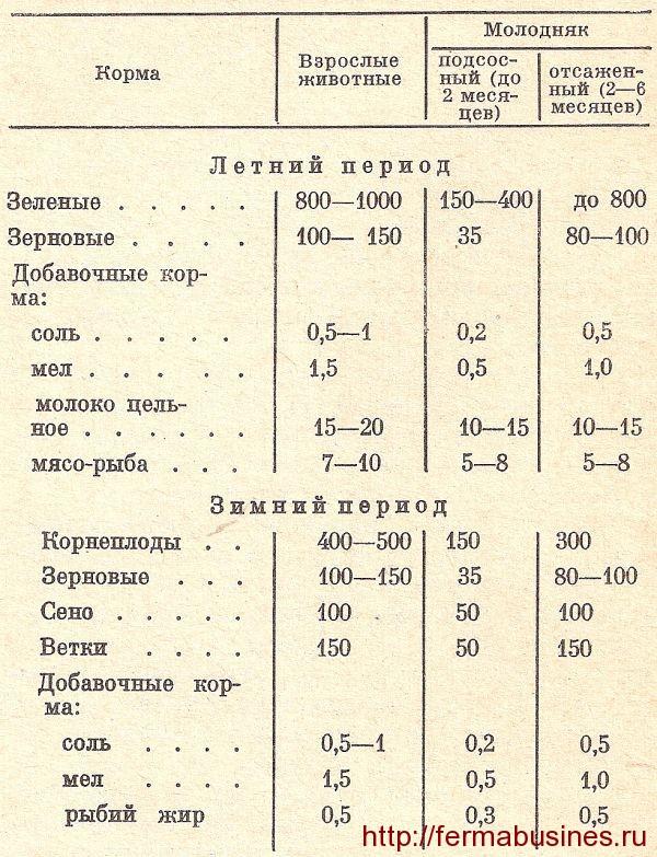 Таблица круглогодичного кормления