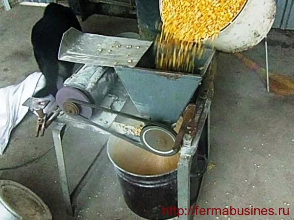 Приготовление комбикорма для нутрии своими руками