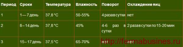 Таблица температуры, влажности и переворота яиц по дням инкубации