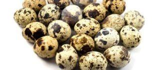 Нарушение структуры скорлупы перепелиных яиц