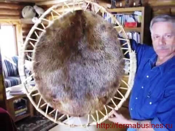 Мех на рамке для растяжки