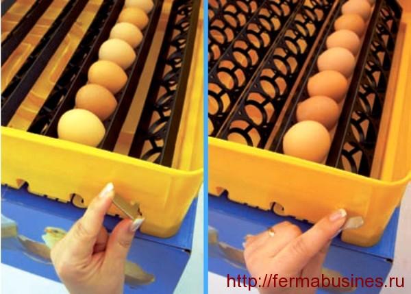 Простейший механизм переворота яиц